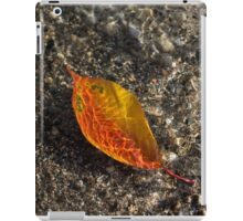 Autumn Colors and Playful Sunlight Patterns - Cherry Leaf iPad Case/Skin