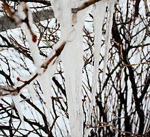 Brrrr by Jess Vendette