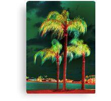 Palms trees  Canvas Print