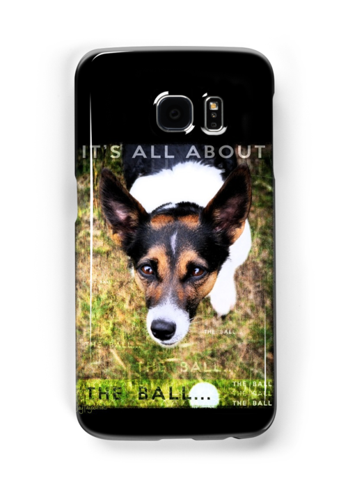 Terrier Obsession: It's All About The Ball by Jay Taylor