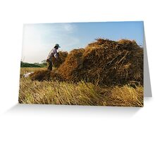 Straw collecting Greeting Card