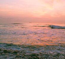 morning's precious light #3 by Juilee  Pryor