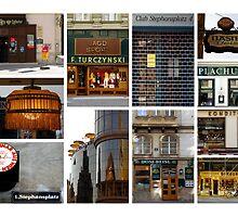 90 Minutes in Vienna by Kasia-D