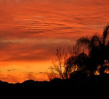 California Sunset by Cheryl  Lunde