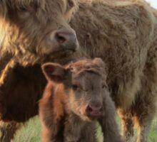 Elma and Moose  26 May 2014 Sticker