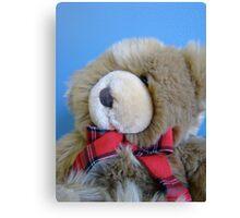 teddy bear, teddy bear! Canvas Print