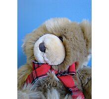 teddy bear, teddy bear! Photographic Print