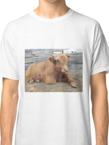 Moose  15 March 2015 Classic T-Shirt