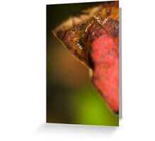 an insects world Greeting Card