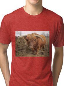 Thunder  15 March 2015 Tri-blend T-Shirt
