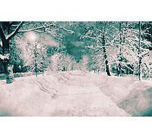 Winter wonderland. Night snowy street in pink and blue tones with halftone effect Photographic Print
