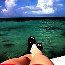What a View... by Terri~Lynn Bealle