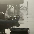 foggy day (4) by lukasdf