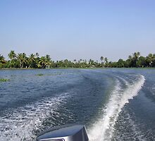 Wake from the wash of an outboard motor boat in a lagoon by ashishagarwal74