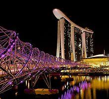 Helix Bridge  by FLYINGSCOTSMAN
