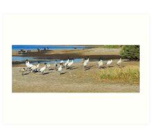 Salisbury - Wetlands - Twilight Art Print