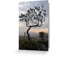 Firenze from Piazzale Michelangelo Greeting Card