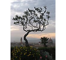 Firenze from Piazzale Michelangelo Photographic Print