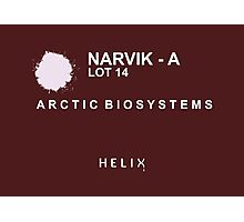 Helix - Narvik - A Photographic Print