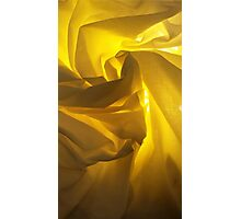 A lighter shade of flowers Photographic Print