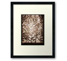 untitled~1 Framed Print