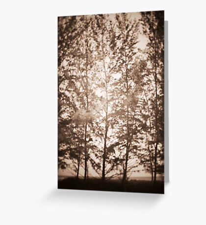 untitled~1 Greeting Card