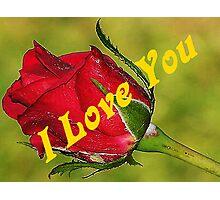 I Love You Rose Bud Photographic Print