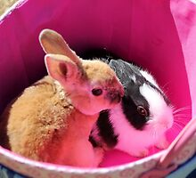 A Basket of Bunnies by Darlene Lankford Honeycutt