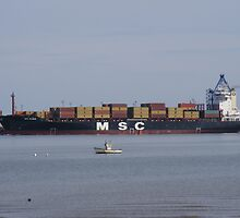 MSC ship porting by Martin  Egner
