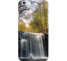 Greening Trees at Harrison Wright Falls iPhone Case/Skin