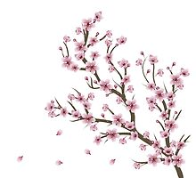 Blooming Sakura Branch 4 by AnnArtshock