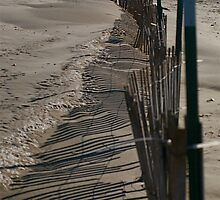 What side of the fence are you on by robertpearson
