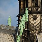 Surfing Notre Dame by Country  Pursuits