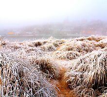 Frozen dunes by Blackgull