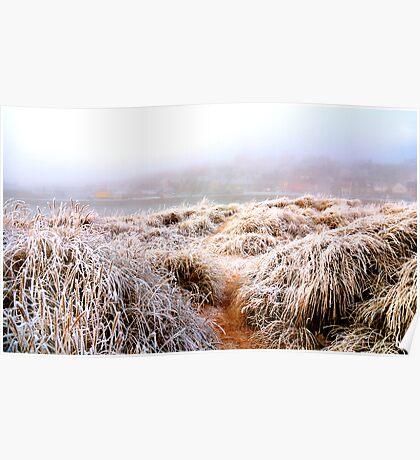 Frozen dunes Poster