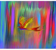 Flight of the Phoenix Photographic Print