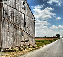 Country Road by Dyle Warren