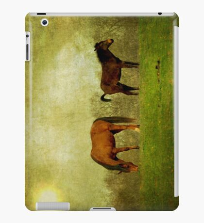 And at the end of the day iPad Case/Skin
