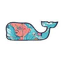 Vineyard Vines Whale Lilly Print 2 Photographic Print