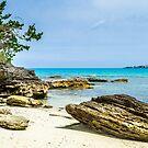 Z.B.M. Beach Park Devonshire Bermuda... by buddybetsy