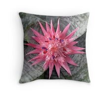 pink passions #1 Throw Pillow
