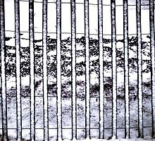 Snow on a Snow Fence Patterns Contrasts by M Sylvia Chaume