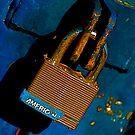 American Lock by Pamela Hubbard