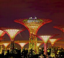 Gardens by the bay by FLYINGSCOTSMAN