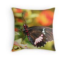 ~butterfly~ Throw Pillow