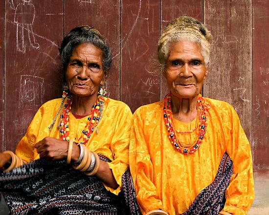 Welcoming Village Elders by Gina Ruttle  (Whalegeek)