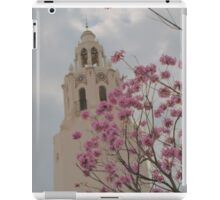 The Carthay iPad Case/Skin