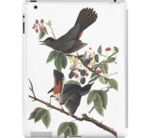 Gray Catbird - Audubon Birds of America, Dumetella carolinensis iPad Case/Skin