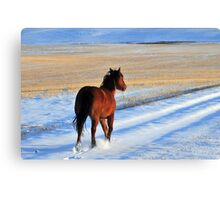 Snow Boogie Canvas Print