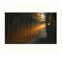Tempted by the morning-sun Art Print